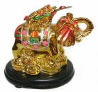Colorful Money Frog on Elephant