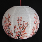 2 of Chinese White Paper Lanterns with Plum Pictures