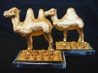 Pair of Golden Camels