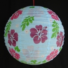 2 of Light Blue Paper Lanterns with Flower Pictures